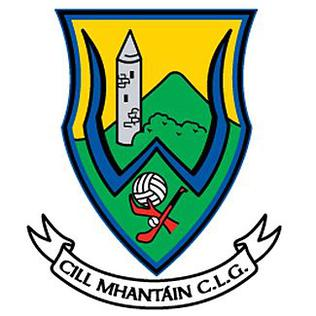Wicklow_gaa